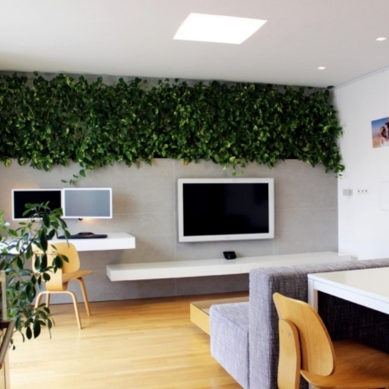 Interior Decoration With Plants