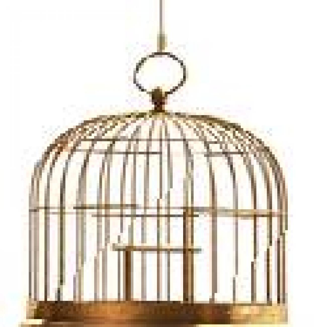Cage_