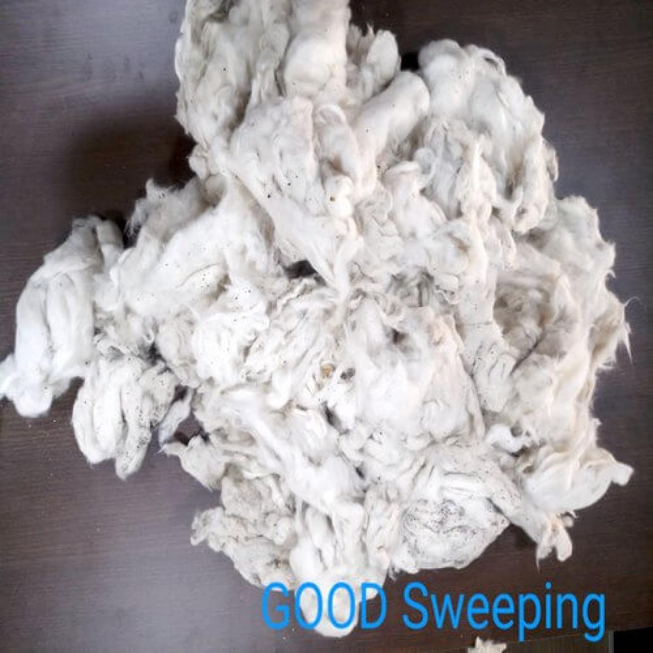 Cotton Sweeping Waste