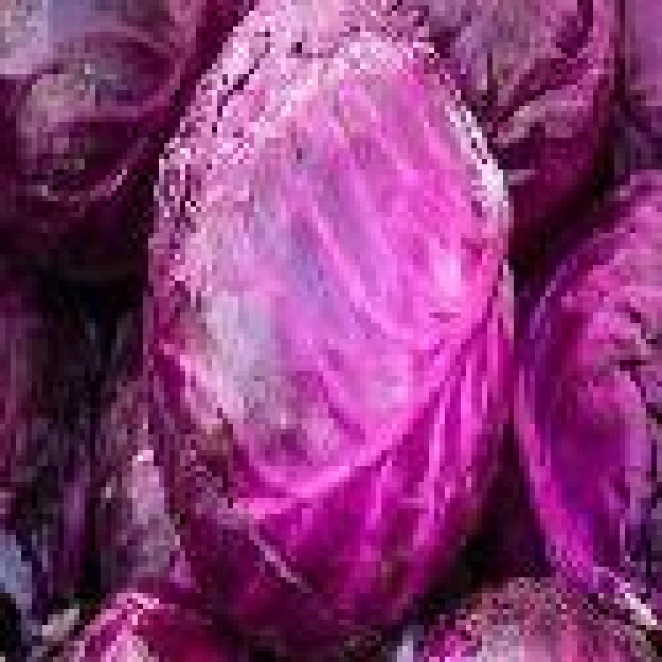 Natural_Red_Cabbage_(1)