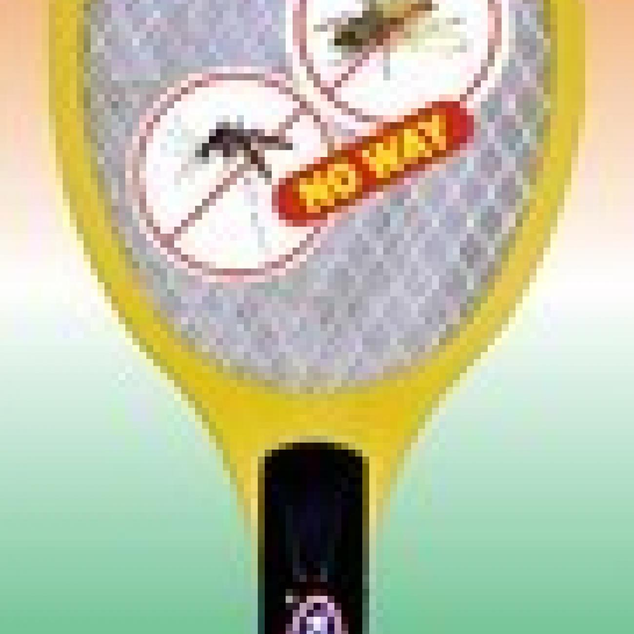 rechargeable-mosquito-racket-250x250